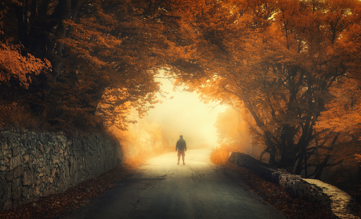 Autumn forest with silhouette of a man on the rural road