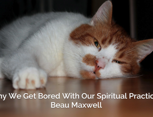 Why We Get Bored of Our Spiritual Practices