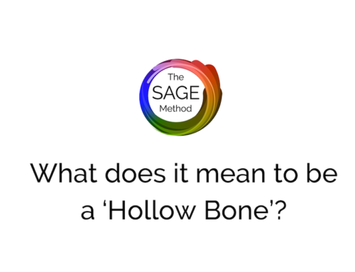 What does it mean to be a 'hollow bone'?